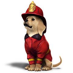 Chiot pompier