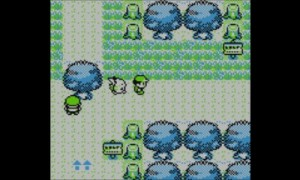 pokemon-version-jaune-contenu-001