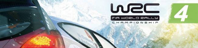 WRC 4 Critique1
